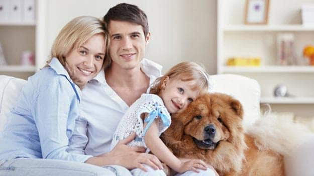Wills & Trusts dog-young-family Direct Wills Sunbury-on-Thames